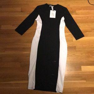 Woman's Zara Dress